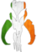 Irishfett